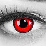 Farbige Kontaktlinsen Jahreslinsen Meralens 1