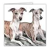 Whippet (Paar) Hund Geschenk–Qualität Grüße Karte mit gratis Auto-Lufterfrischer