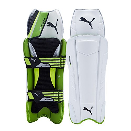 Puma 2017 Cricket Evopower FXT Wicket Keeping Pads