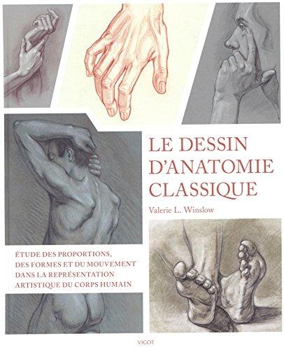Le dessin d'anatomie classique : proportions, mouvement et morphologie dans la représentation artistique du corps humain