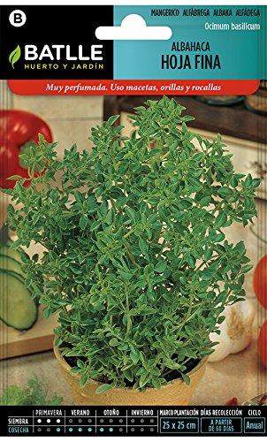 Semillas Aromáticas - Albahaca de hoja fina - Batlle