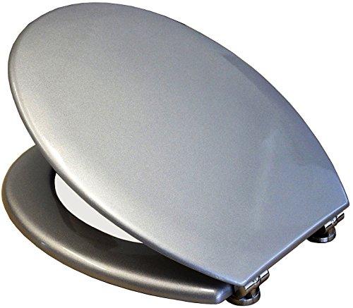 Toilettendeckel Deckel Wc-Sitz Toilettensitz Antibakteriell grau Silber