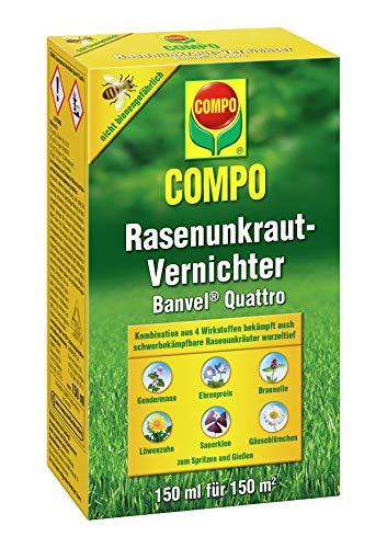 COMPO Rasenunkraut-Vernichter Banvel Quattro (Nachfolger Banvel M), Bekämpfung von schwerbekämpfbaren Unkräutern im Rasen, Konzentrat, 150 ml (150 m²)
