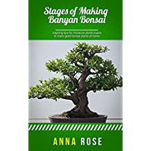 Stages Of Making Banyan Bonsai (English Edition)