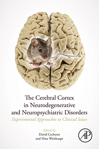 The Cerebral Cortex in Neurodegenerative and Neuropsychiatric Disorders: Experimental Approaches to Clinical Issues (English Edition) Executive Hd System