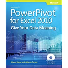 Microsoft® PowerPivot for Excel® 2010: Give Your Data Meaning (Business Skills) by Marco Russo (15-Oct-2010) Paperback