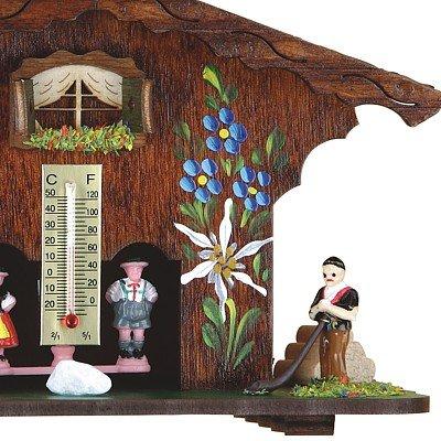 Wetterhaus aus dem Schwarzwald TU 821 - 4