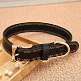 Daeou Hundehalsbänder Leder-Halsring mit Hundehalsband