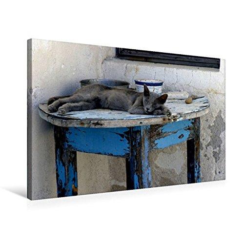 Premium Textil-Leinwand 75 cm x 50 cm quer, Ruhe und Gelassenheit | Wandbild, Bild auf Keilrahmen, Fertigbild auf echter Leinwand, Leinwanddruck: Katze auf Santorini (CALVENDO Glaube)