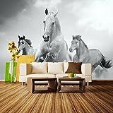 Fototapete Pferde laufen in Weiß und Schwarz Vlies Tapete Wandtapete - Tapete - Moderne Wanddeko - Wandbilder - Fotogeschenke - Wand Dekoration wandmotiv24 Größe: L 300 x 210 cm - 6 Teile - Vlies