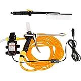 Pistola con aerosol de NUZAMAS 60W 12V 87PSI 4.0L/min de presión alta, para lavar el auto, bomba de agua para limpiar, eléctrica, kit de pincel para tirar aerosol.