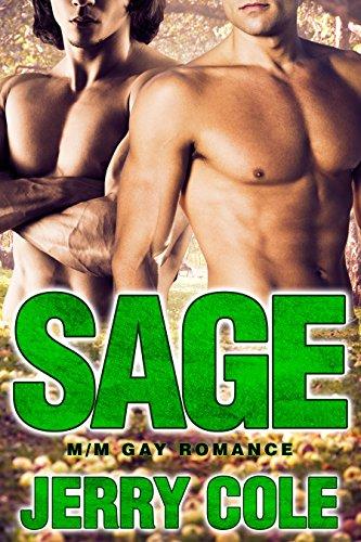 sage-m-m-gay-romance