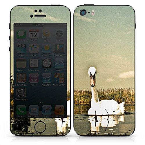 Apple iPhone 4s Case Skin Sticker aus Vinyl-Folie Aufkleber Schwan Vogel Gans DesignSkins® glänzend