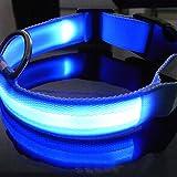 LED Halsband Light - LED Leuchtschlauch Leuchthalsband Hundehalsband Hund Blau S