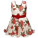 Wish Karo baby girls Frock Dress DN fr fre085rdeco-5-6yrsw