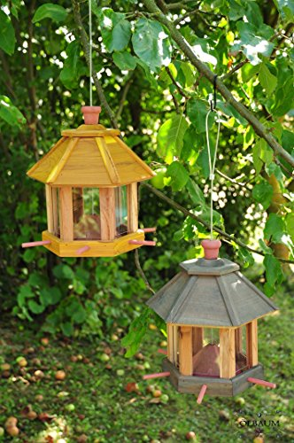 2-mangiatoia-casa-mangiatoia-per-uccelli-da-appendere-con-luci-a-led-confezione-doppia-con-6x-romant