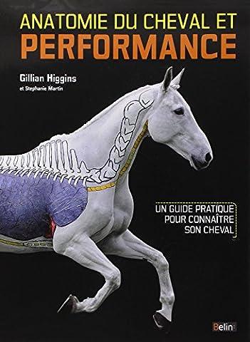 Anatomie du cheval et performance : Un guide pratique pour