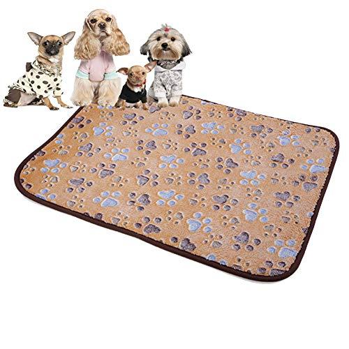 e97349567811 DYYTR Tappetino per Animali Domestici 2 in 1, stuoia di Raffreddamento per  Animali Domestici a Doppio Uso per Il Raffreddamento degli Animali ...