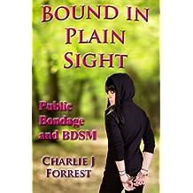 Bound in Plain Sight: Public Bondage and BDSM (Cristina's Crises Book 1)