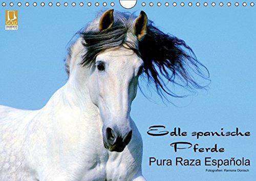Edle spanische Pferde - Pura Raza Espanola (Wandkalender 2019 DIN A4 quer): Die wunderbaren Pferde...