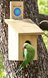#5: Srishti Pine Bird House