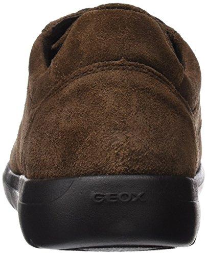 Geox U743QB00022, Scarpe con Lacci Uomo Marrone (Ebony)