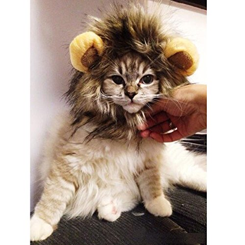 Meijunter Lion Mane Perücke für Hund und Katze Kostüm Haustier Verstellbar Waschbar Bequem (weiß) (Lion's Mane Kostüm Perücke)