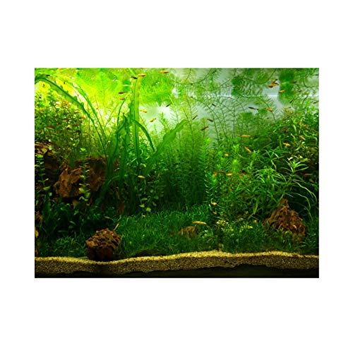 Hintergrund für Aquarium, PVC, Selbstklebend, grünes Wassergras, 122 * 46cm