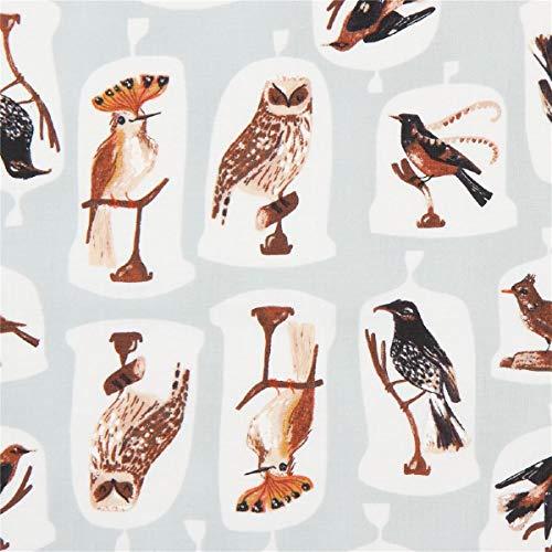 Timeless Treasures Tissu en Coton Vert Clair avec des Oiseaux dans des présentoirs