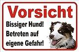 AdriLeo Schild Vorsicht Australian Shepherd Bissiger Hund 15x20 oder 20x30 (20x30cm)