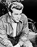 Moviestore James Dean als Jim Stark in Rebel Without a Cause 25x20cm Schwarzweiß-Foto