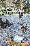 Notizbuch: Hühner Notizbuch/Landwirt/Hobbyzüchter/Legeaufzeichnung/Eier Legeleistung -
