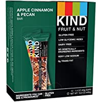 Kind Snacks Fruit and Nut Apple/Cinnamon with Pecan Protein Bar