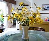 FlowerFest Sunshine Arrangement