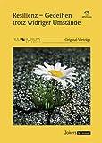 E. Werner, H. Jellouschek, J. Willi et al.: Resilienz - Gedeihen trotz widriger Umstände - 1 MP3-CD – JOK2221M