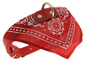 collier rouge cuir bandana foulard chien 42,5cm rock rockabilly pitbull