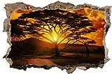 DesFoli Afrika Baum 3D Look Wandtattoo 70 x 115 cm Wanddurchbruch Wandbild Sticker Aufkleber D302