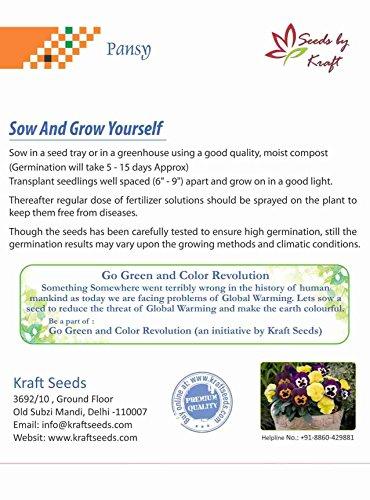 Kraft Seeds Pansy Hybrid Mix Seeds