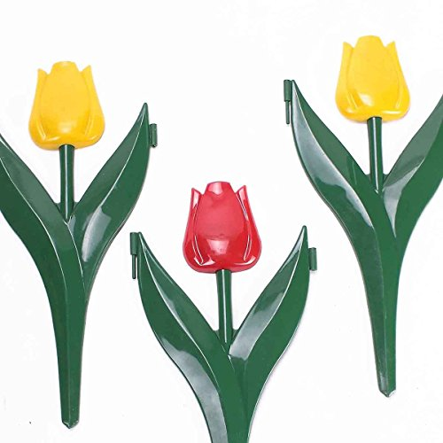 12 tulipes décor bordure