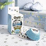 Neviti Little Owls Cupcake-Förmchen, Blau