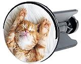 Tappo per lavandino Lilly | adatto per tutti i lavandini universali | di alta qualità ✶✶✶✶✶