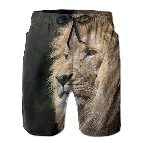Lands End Jungen Shorts (Magictop Lion Männer Quick Dry Strand Board Shorts Sommer Badehose zum Vatertag für Jungen Schwimmen XXL)