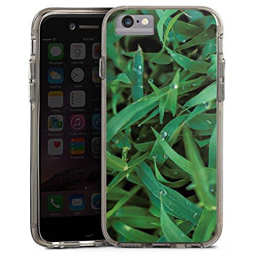 Apple iPhone 6 Bumper Hülle Bumper Case Glitzer Hülle Grashalm Tautropfen Gras Bumper Case transparent grau