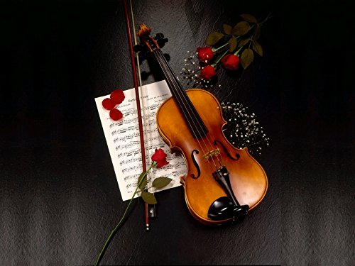 Posterhouzz Music Violin Wall Poster  available at amazon for Rs.199