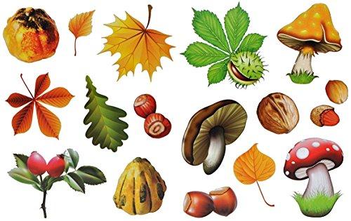 16 Stück: Fensterbilder Herbst - Blätter Pilze Kastanien und Herbstfrüchte - Sticker _ statisch haftend wiederverwendbar _ Fenstersticker Aufkleber selbstklebend - Fensterbilder - Glassticker (Kastanien-blatt)