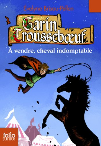 Garin Trousseboeuf (8) : A vendre, cheval indomptable