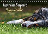 Australian Shepherd - Augenblicke (Tischkalender 2019 DIN A5 quer): Faszination Australian Shepherd - Berührende Augenblicke begleiten Sie durchs ... (Monatskalender, 14 Seiten ) (CALVENDO Tiere)