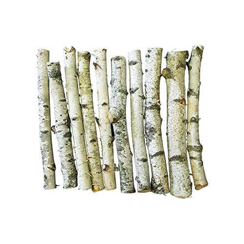 10 Birkenäste in weiß mit Einem Durchmesser von ca. 3-5 cm und ca. 50 cm Länge - hervorragend zur Dekoration von Bodenvasen in Heim und Haus