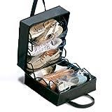 Rayen 6337 - Maleta para guardar y ordenar zapatos, 35 x 32 x 17 cm, color negro