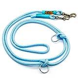 Taumur: zweifach verstellbare Hunde-Tauleine - hellblau/türkis - Leine für kleine Hunde aus robustem PPM